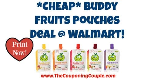 Buddy Fruits Pouches Deal